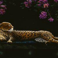 Cattales by Uriél Dana & Gage Taylor